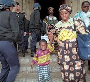 [GISTI] 1996-1997 : l'épopée des Saint-Bernard